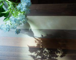 「影」と「陰」の違いのイメージ画像
